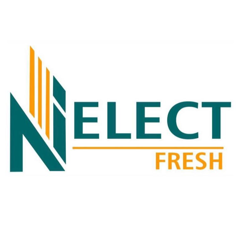 Nelect Investments
