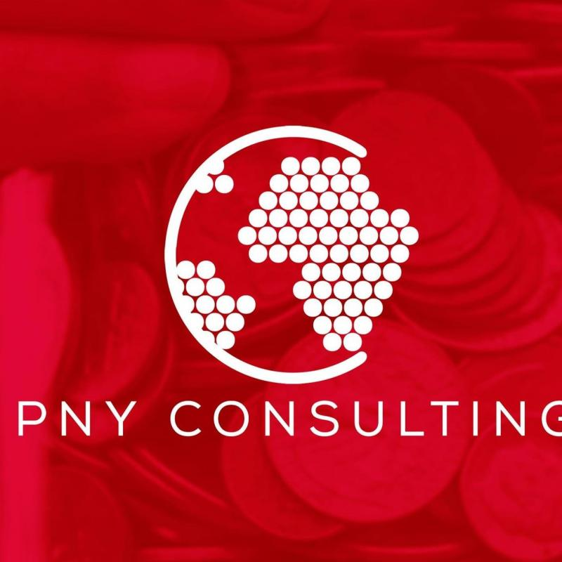 Naim Tax Consulting (Pvt) Limited t/a PNY Consulting